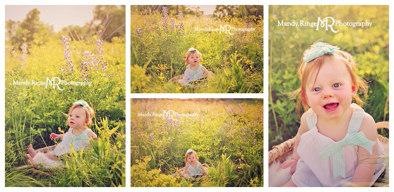 8 month old girl portraits // Wild indigo field, white and teal dress, prairie wildflowers // St. Charles, IL // by Mandy Ringe Photography