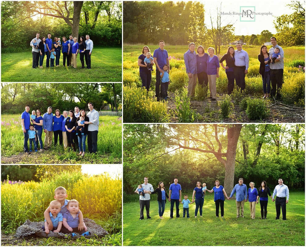 Extended family portraits // Outdoor, wild mustard field, backlighting, wildflowers, blue, black, gray // Leroy Oakes - St. Charles, IL // by Mandy Ringe Photography