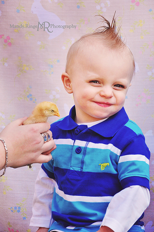Easter photo shoot // Cousins, boys, bunny backdrop, live chick // Camden, OH // by Mandy Ringe Photography
