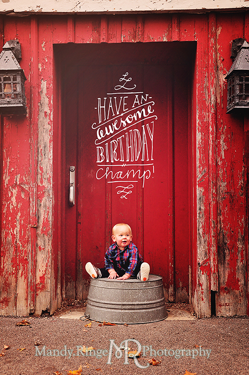 1 year old boy sitting on a wash tub in front of a red barn // First birthday portraits // Leroy Oaks - St Charles, IL // by Mandy Ringe Photography
