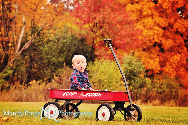1 year old boy sitting in a Radio Flyer wagon with colorful autumn trees in the background // First birthday portraits // Leroy Oaks - St Charles, IL // by Mandy Ringe Photography