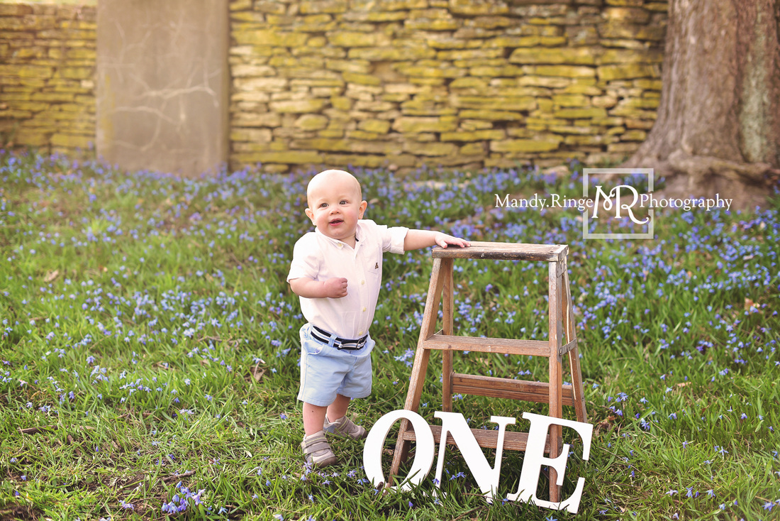 Spring family portraits // Boy and girl siblings, family of four, blue flowers, first birthday, ONE, wooden ladder // Fabyan Forest Preserve - Geneva, IL // by Mandy Ringe Photography