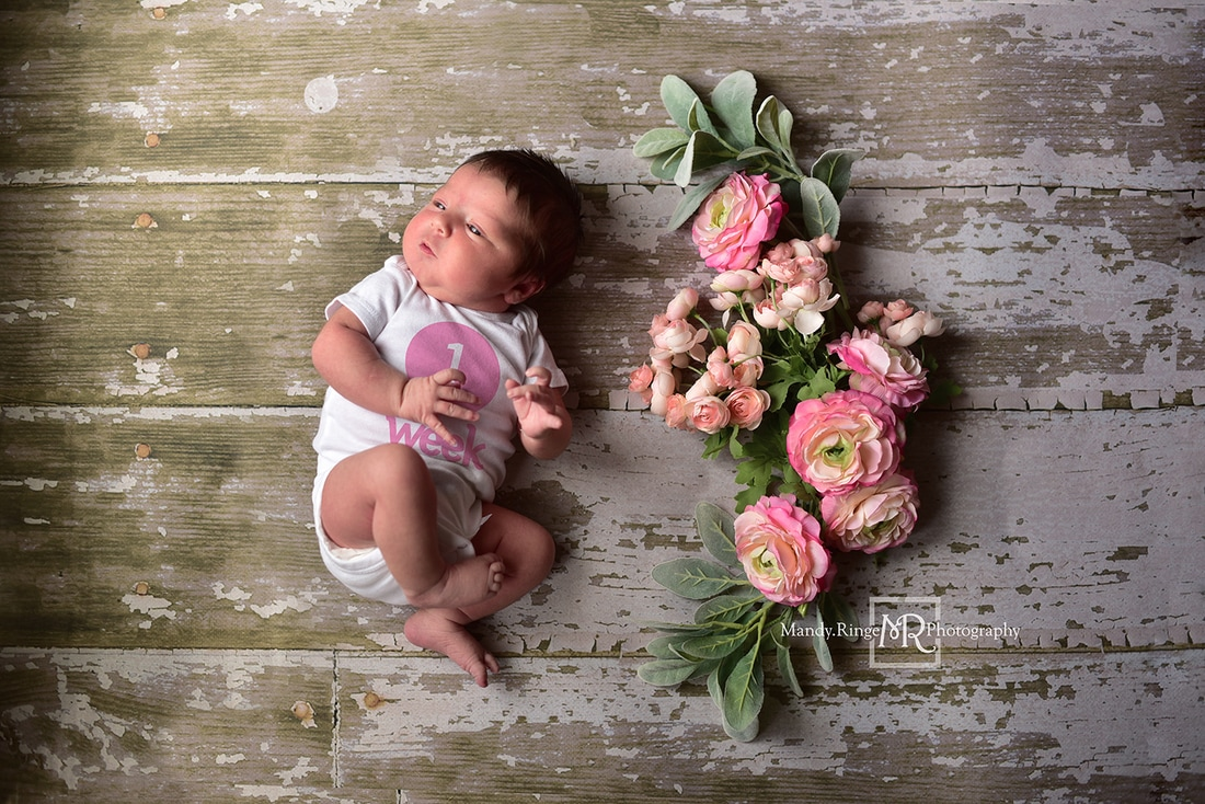 Baby girl weekly photo project, flowers, floral swag, shabby chic // St. Charles, IL Photographer // by Mandy Ringe Photography