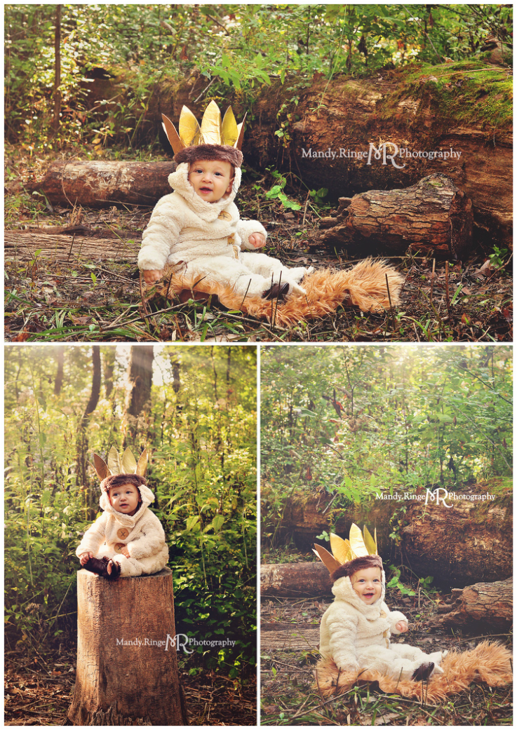 First birthday portraits // Where the Wild Things Are, Max, costume, woods, sitting on a tree stump, forest, boy // Delnor Woods - St. Charles, IL // by Mandy Ringe Photography