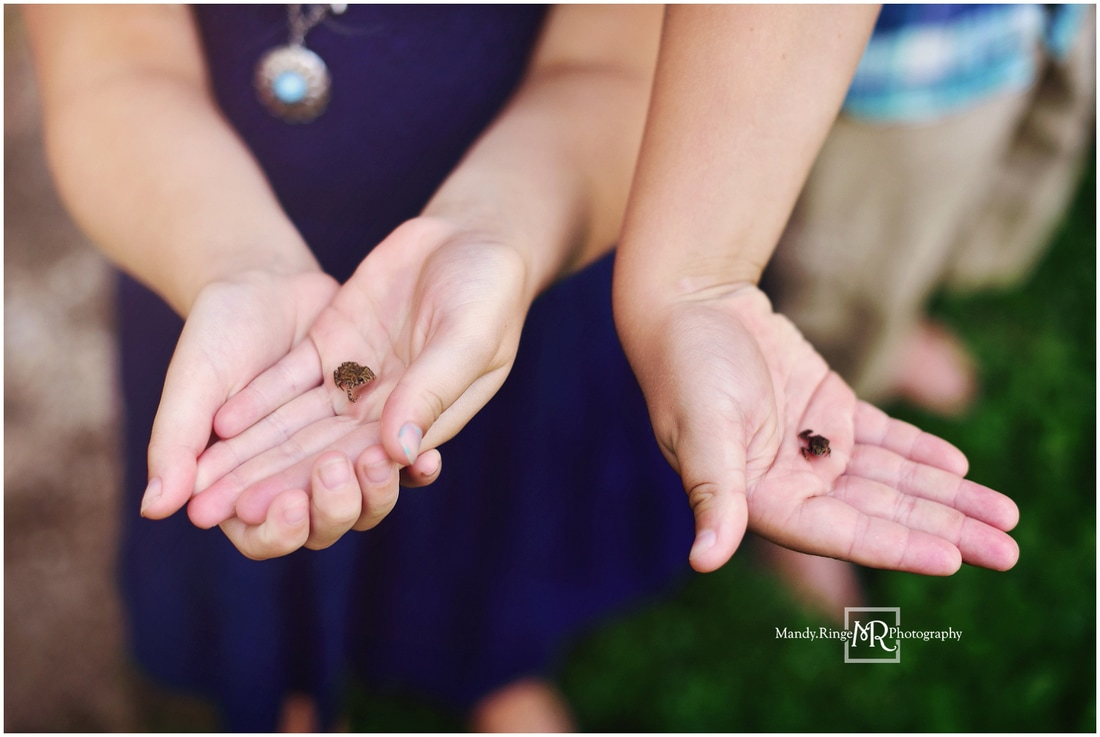 Family portraits // Siblings, outdoors, baby toads, summer // Leroy Oakes - St. Charles, IL // by Mandy Ringe Photography