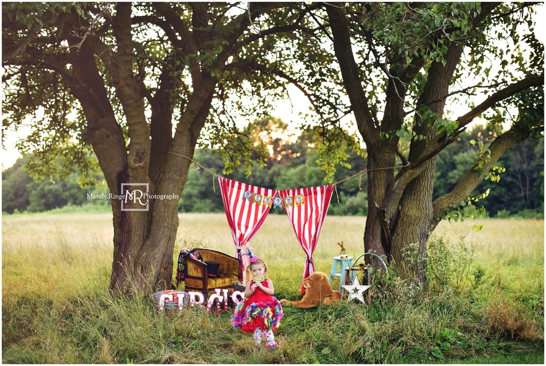 Circus mini session // red and white striped curtains, plush lion, circus letters, tophat, clown dress // Leroy Oakes - St.Charles, IL // by Mandy Ringe Photography