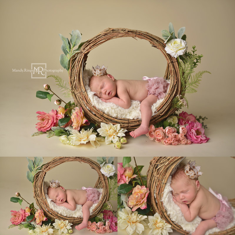 Newborn portraits // Girl, bone seamless, pink, white, willow branch basket, hoop basket, flowers, spring, crown, princess // St. Charles, IL studio // by Mandy Ringe Photography