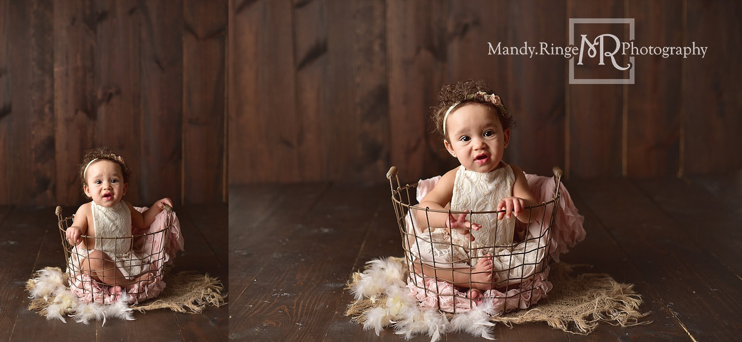 Baby girl first birthday portraits // milestone portraits, wire basket, burlap, feathers, dark wood backdrop // by Mandy Ringe Photography // St. Charles, IL Photographer