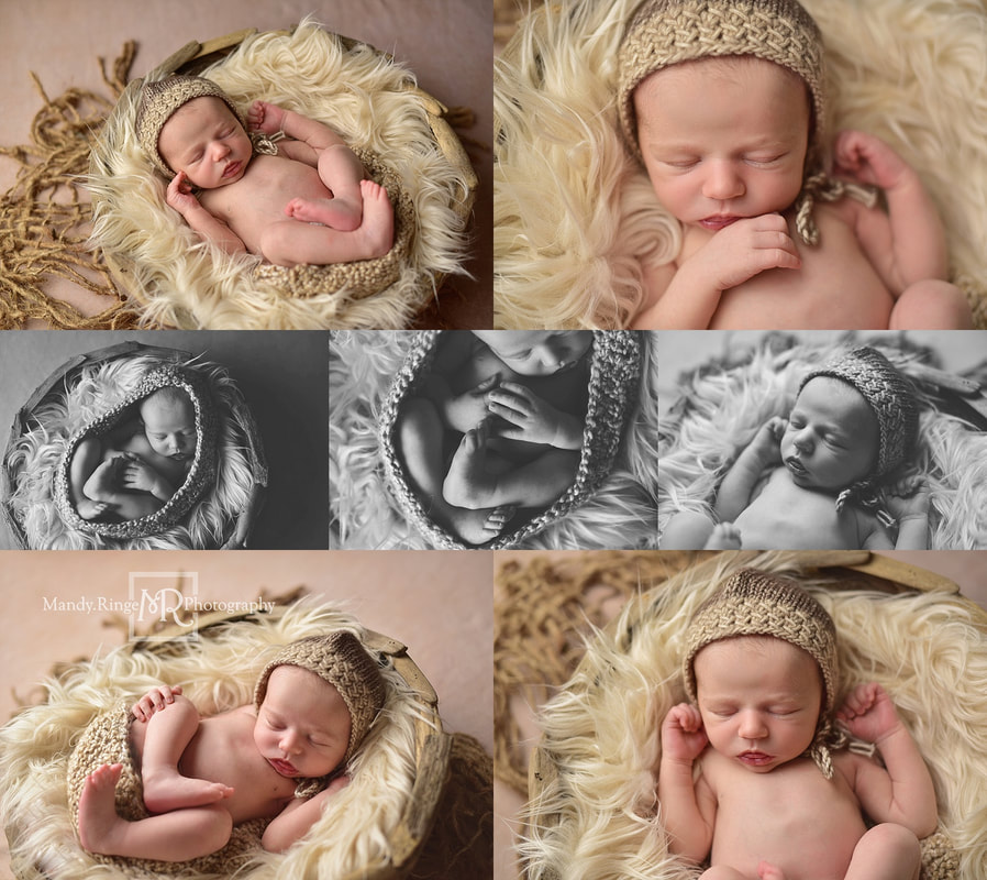 Newborn boy portraits // rustic, tan, brown, driftwood bowl // by Mandy Ringe Photography // St. Charles, IL Photographer