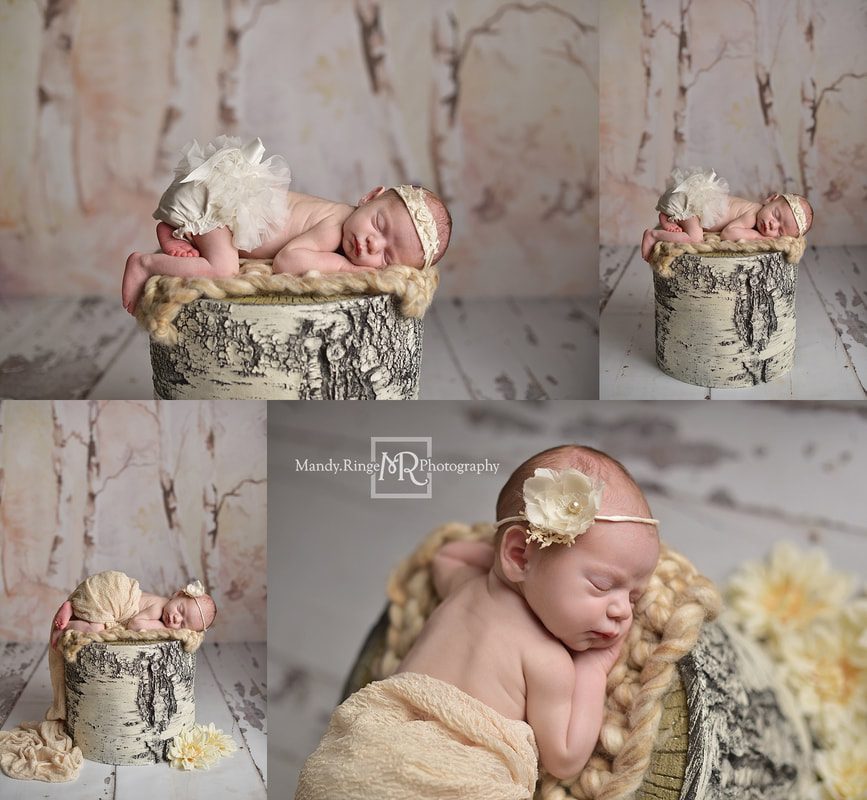 Newborn girl portrait session // floral, neutral, birch // by Mandy Ringe Photography // St. Charles, IL Photographer