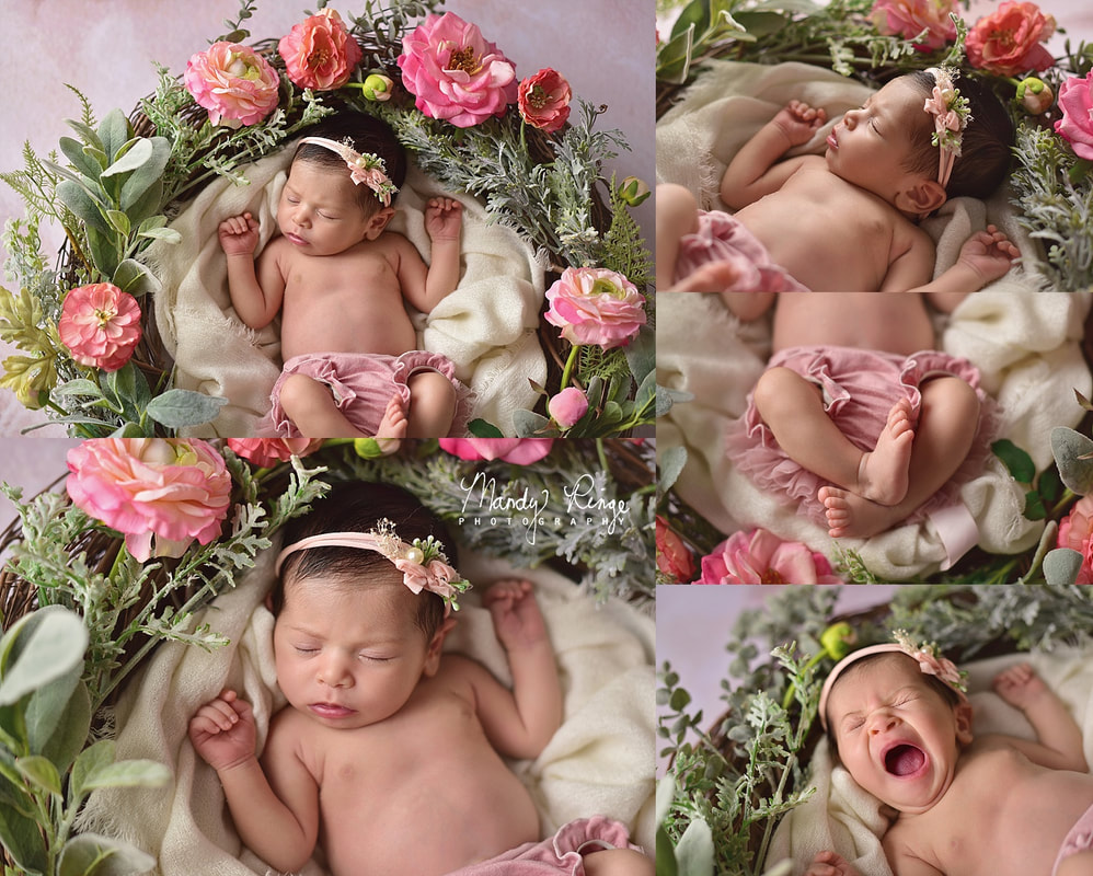 Newborn girl portraits // floral wreath, pink flowers, Intuitions Backdrops // St. Charles, IL Photographer // by Mandy Ringe Photography