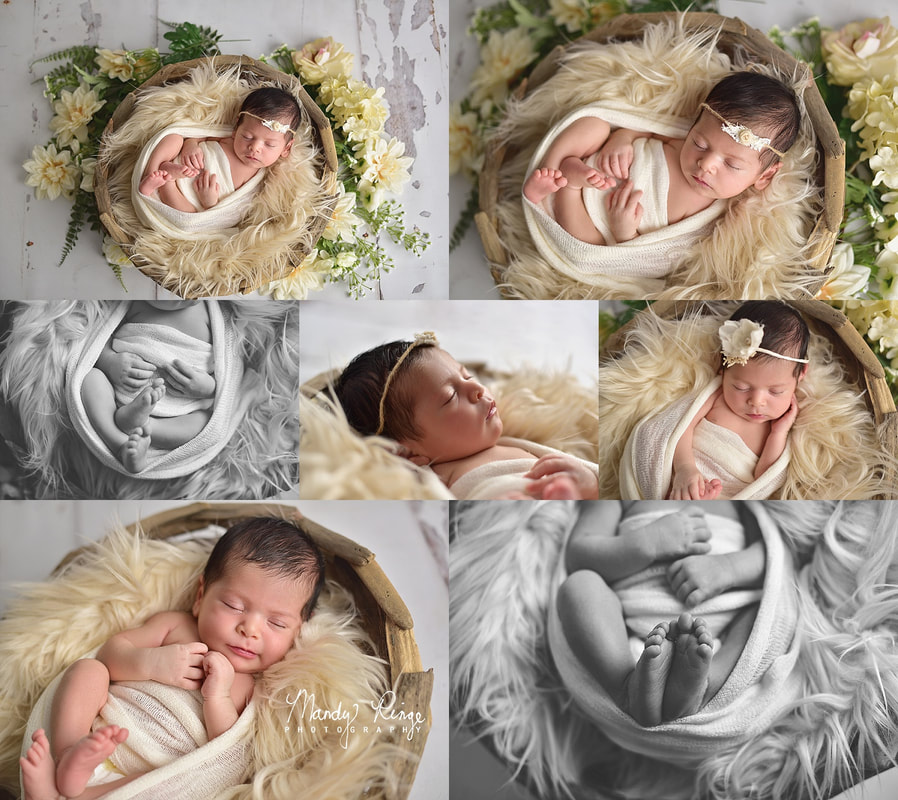 Newborn girl portraits // driftwood bowl, ivory, nude, bum up, flowers, floral, neutral // St. Charles, IL Photographer // by Mandy Ringe Photography