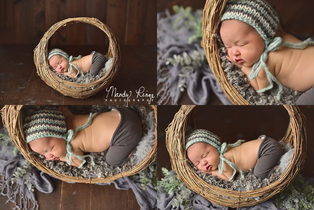 Baby boy newborn portraits // studio, aqua and gray, willow branch basket, greenery, dark brown wood // St. Charles, IL // by Mandy Ringe Photography