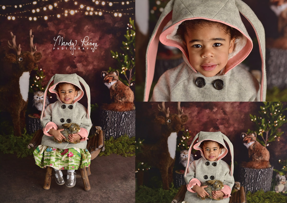 Sibling milestone session // nature, animals, deer, fox, owl, rabbit, Kate Backdrops // St. Charles, IL // by Mandy Ringe Photography