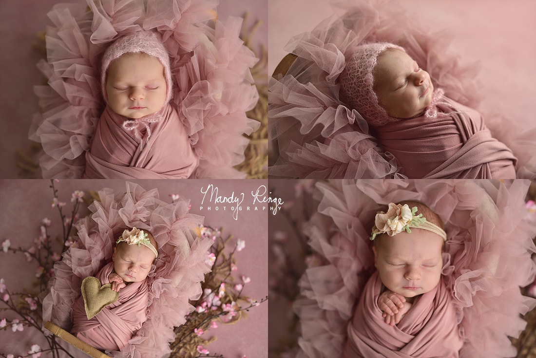 Girl newborn portrait session // pink and purple, floral, flowers // St. Charles, IL // by Mandy Ringe PhotographyPicture