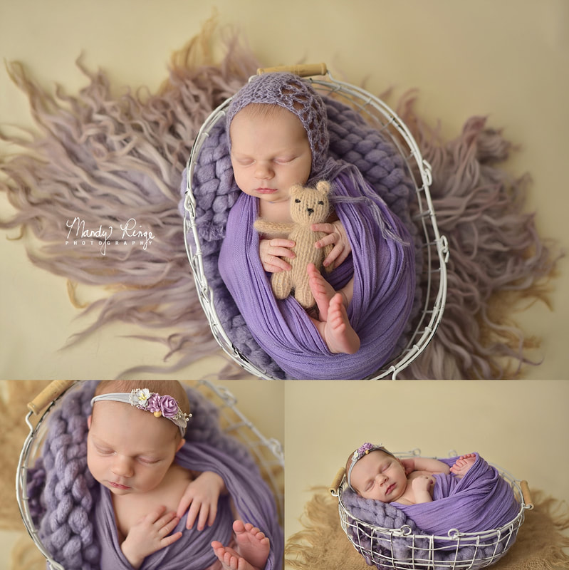 Girl newborn portrait session // pink and purple, floral, flowers // St. Charles, IL // by Mandy Ringe Photography