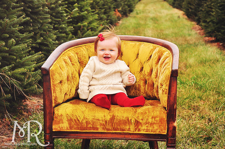Family Christmas Portrait // Christmas Tree Farm // sitting in an antique chair with gold cushions // by Mandy Ringe Photography