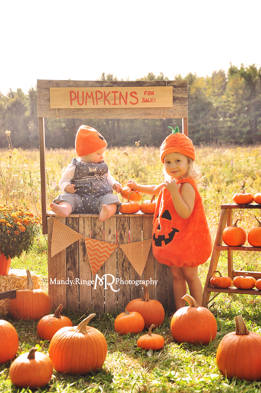 Pumpkin Stand styled mini session // Outdoors with a prairie backdrop, a wooden pumpkin stand, real pumpkins, mums, baskets, a ladder, and a mini wheelbarrow // Leroy Oakes Forest Preserve - St Charles, IL // by Mandy Ringe Photography