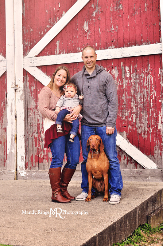 First birthday family portraits // Red and white barn, rustic, family dog, fall portrait // Leroy Oakes Forest Preserve - St. Charles IL // by Mandy Ringe Photography