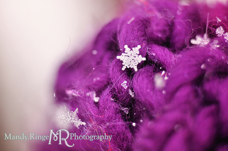Snowflake macro // Purple scarf // St. Charles, IL // by Mandy Ringe Photography