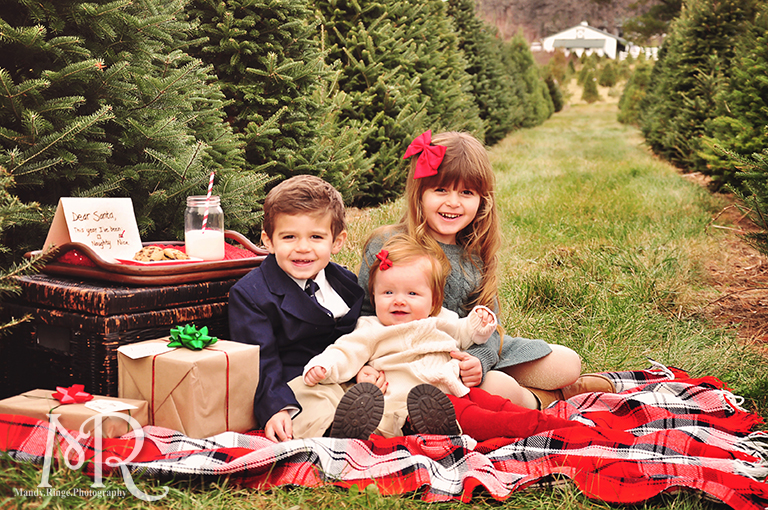 Family Christmas Portrait // Christmas Tree Farm // with milk, cookies, a letter to Santa and presents // by Mandy Ringe Photography