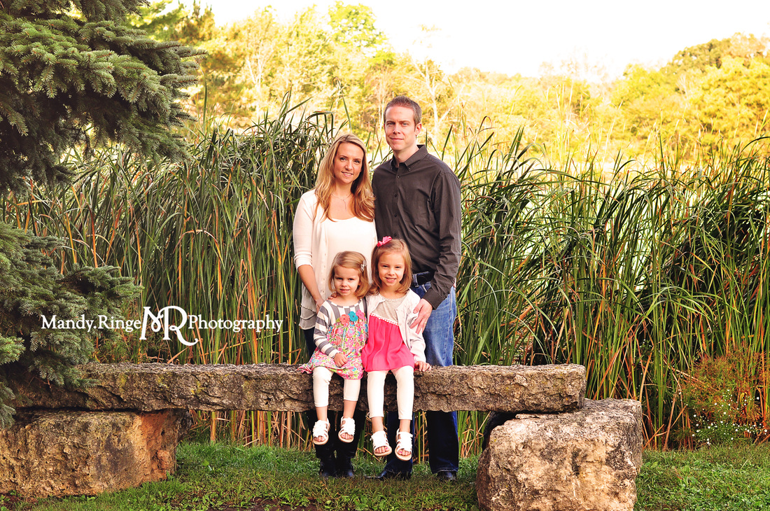 Family portraits // stone bench, cattails // Leroy Oakes Forest Preserve - St. Charles, IL // by Mandy Ringe Photography