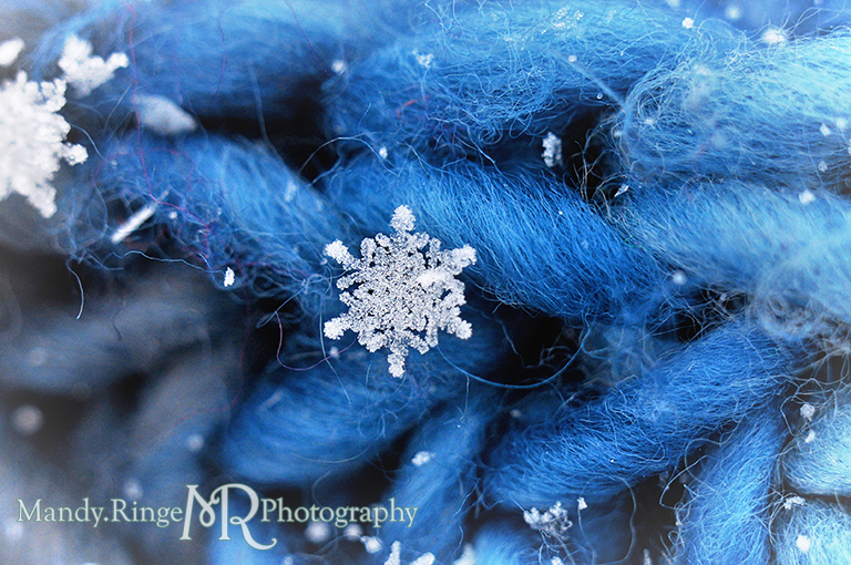 Snowflake macro // blue scarf // St. Charles, IL // by Mandy Ringe Photography