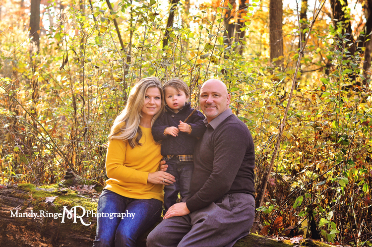 Fall family portraits // Fall foliage, sitting on a log // Delnor Woods - St Charles, IL // by Mandy Rnige Photography