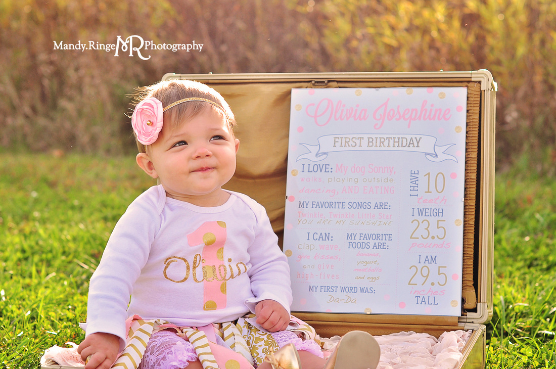 First birthday portraits // girl, pink and gold, rag skirt, gold chair, outdoors, prairie // Leroy Oakes Forest Preserve - St. Charles IL // by Mandy Ringe Photography