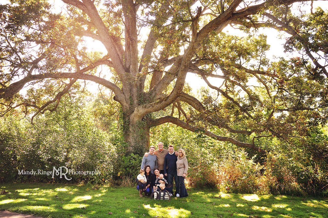 Mandy Ringe Photography // St Charles, IL Photographer // Extended Family Portraits