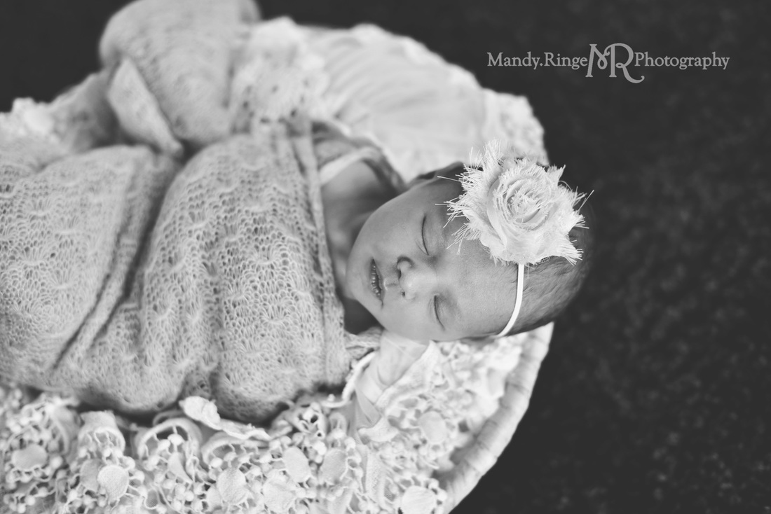 Newborn girl portraits // pink wrap, black rug, round basket, vintage lace stuffer // client's home - Geneva, IL // by Mandy Ringe Photography