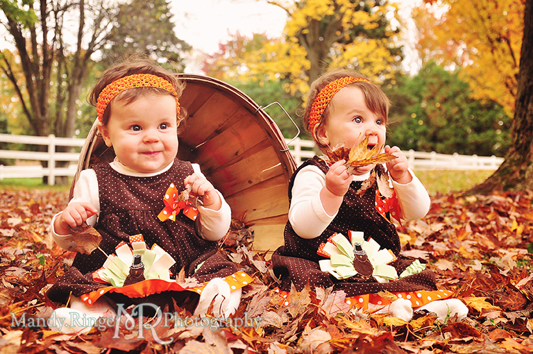 Fall portraits of 9 month old twins // Sitting in an apple basket among leaves // St. James Farm - Wheaton, IL // by Mandy Ringe Photography