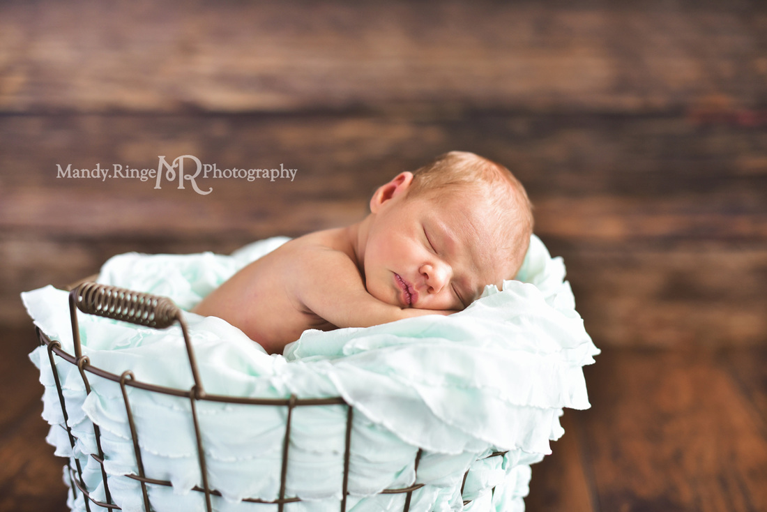 Newborn girl portraits // Dark wood backdrop, floordrop, egg basket, mint green ruffle stuffer // client's home - Geneva, IL // by Mandy Ringe Photography