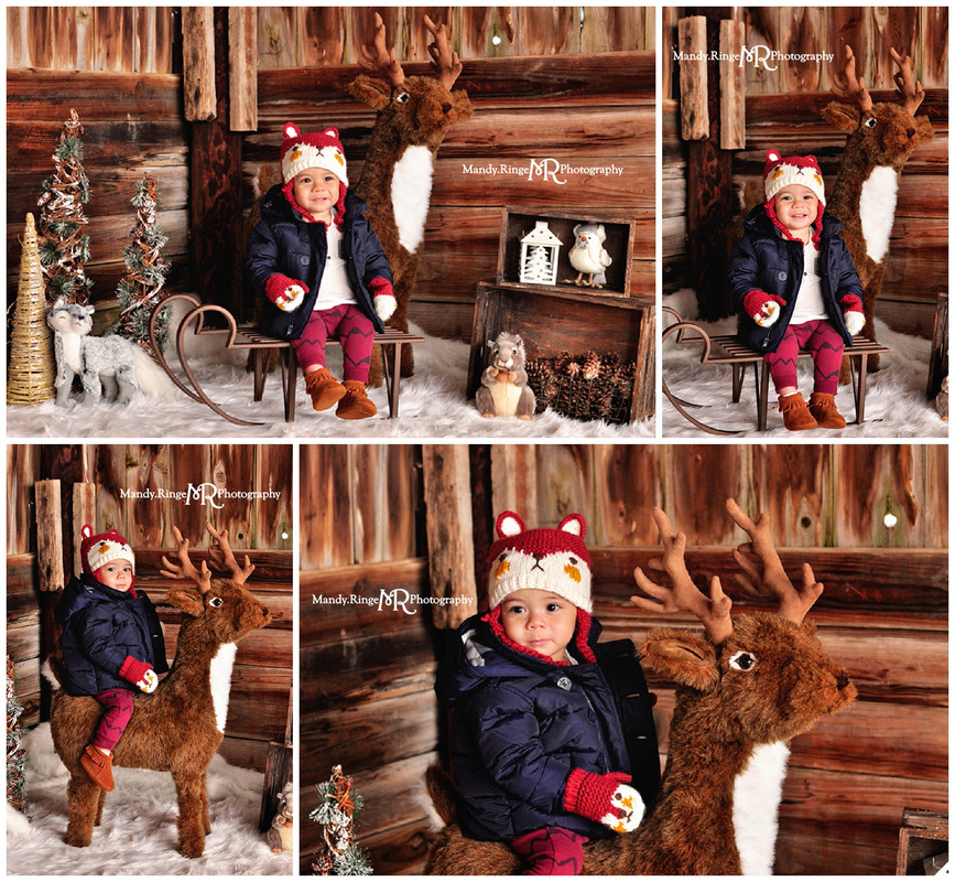 Woodland Winter styled mini session // dark barnwood backdrop, white fur, woodland animals, stuffed, plush, animals, pine trees, sled bench // Peck Farm - Geneva, IL // by Mandy Ringe Photography