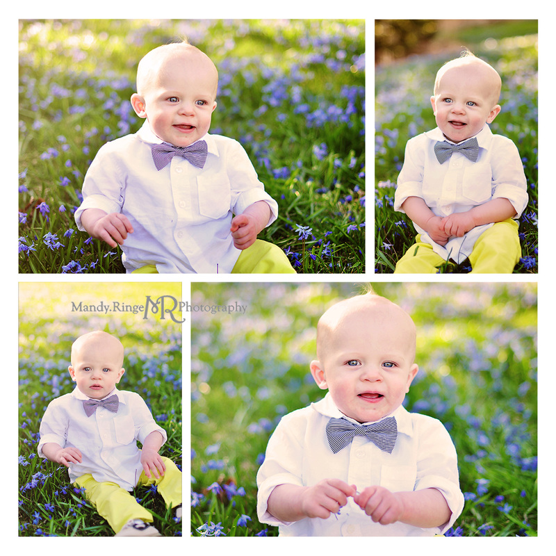 Spring portraits // 10 month old boy // blue flowers // Fabyan forest preserve - Geneva, IL // by Mandy Ringe Photography
