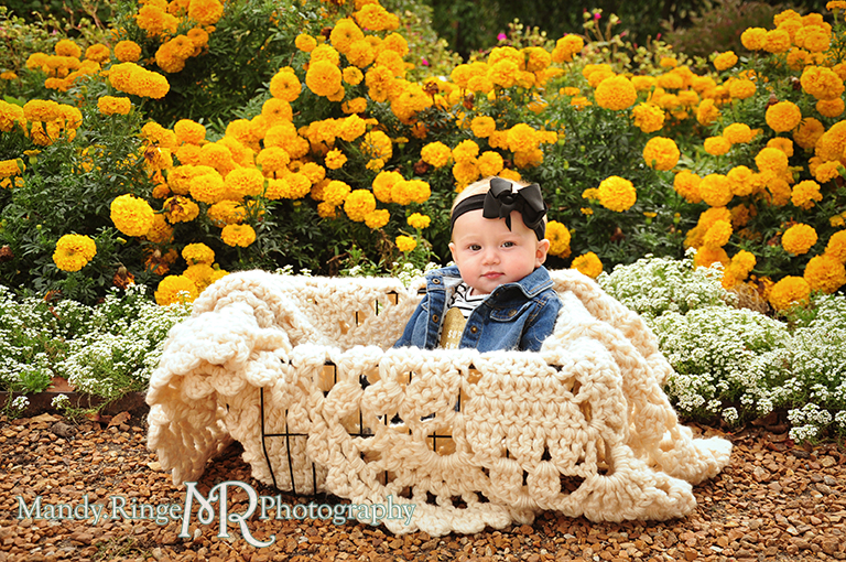 6 month old baby girl portraits // sitting in a basket with a crocheted blanket with marigolds // Cantigny Gardens - Wheaton, IL // by Mandy Ringe Photography