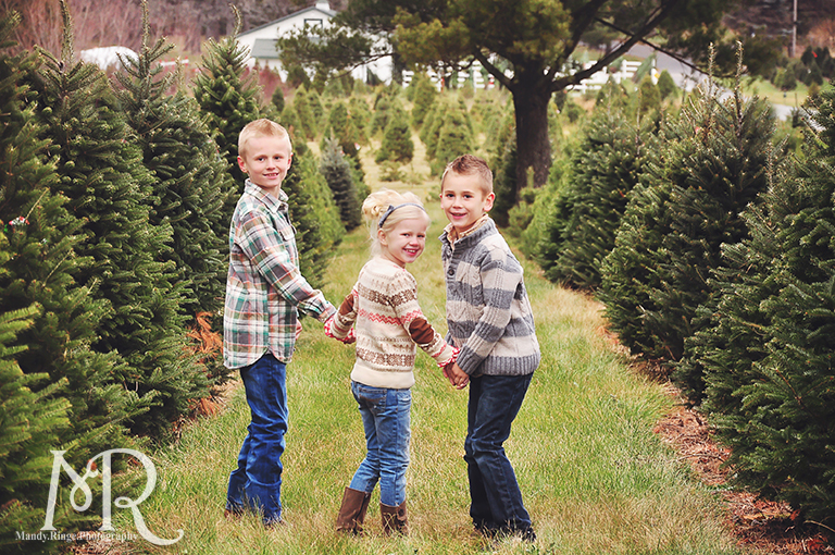 Family Christmas Portrait // Christmas Tree Farm // simple Christmas photo idea, kids walking away between rows of pine trees then stoppig to turn around // by Mandy Ringe Photography