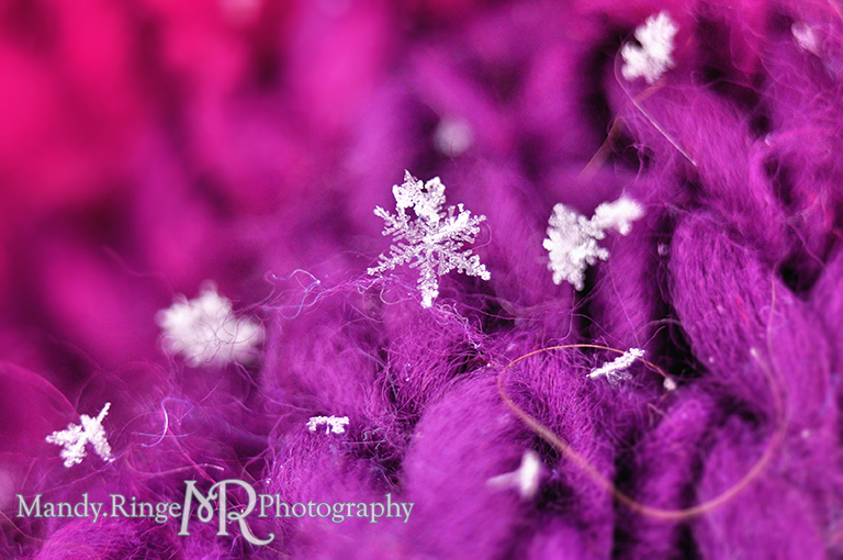 Snowflake macro // pink, purple, fuchsia scarf // St. Charles, IL // by Mandy Ringe Photography