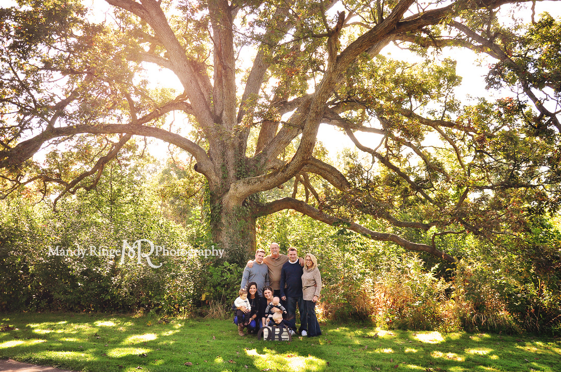 Extended family portraits // outdoors, end of summer, big oak tree, navy blue, tan, gray // Delnor Woods - St. Charles, IL // by Mandy Ringe Photography