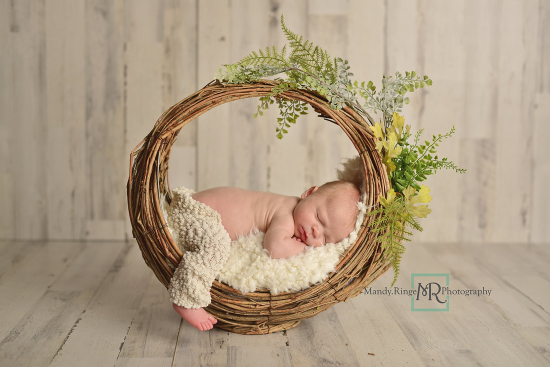 Newborn boy portraits // Basket prop, greenery, white, neutral, White Pine Home Depot Panels // St. Charles, IL studio // by Mandy Ringe Photography