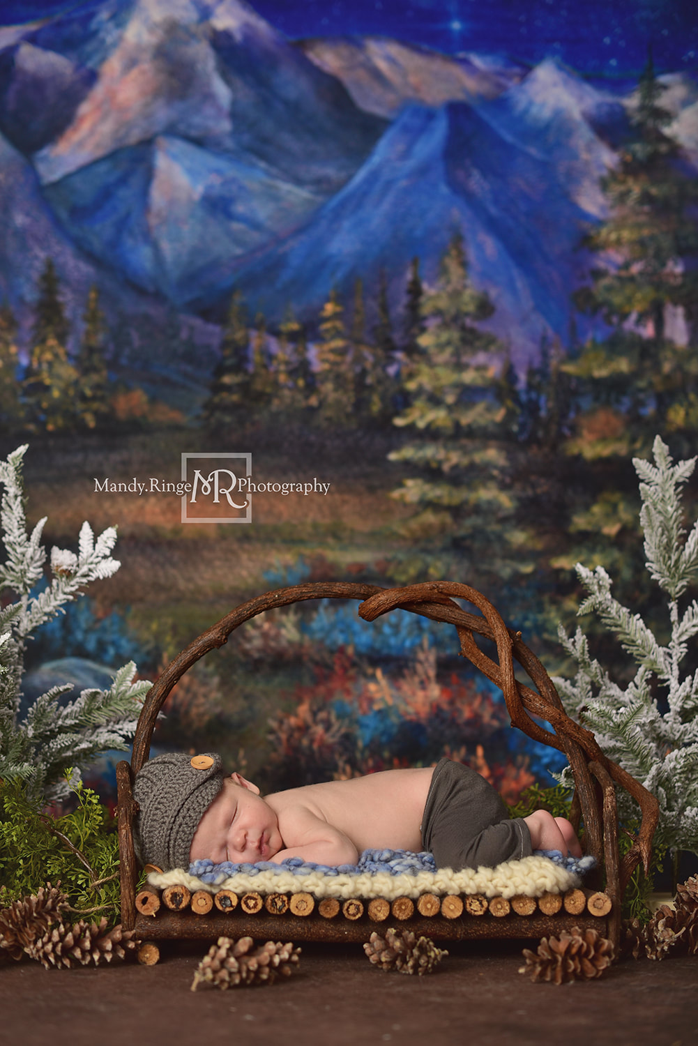 Newborn boy portraits // Fake pine trees, pinecones, twig bed, Under the Stars from Baby Dream Backdrops, Dirt Floordrop, Intuitions Backgrounds // St. Charles, IL studio // by Mandy Ringe Photography